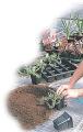 Soil product