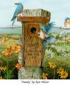 Homes for Bluebirds