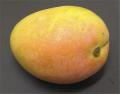 Haitian Mangoes
