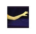 Full Length Cotton Gloves