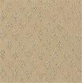 Admired Fashion Carpet