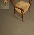 Attitude II Carpet