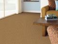 Insightful Image Italian Suede Carpet