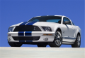 2009 Ford Shelby GT500 Base Vehicle