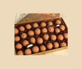Cherries Gabriella in milk chocolate