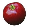 Akane Apple