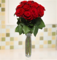 12 Stunning Red Roses
