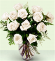 XX-821W White Rose