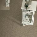 Princess Cut Bigelow Carpet