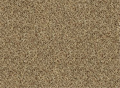 Textured Plush Carpet