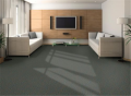 Accommodation - Shaded Island Carpet