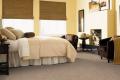 Smart Color Carpet
