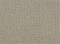 4B644 Elegant Retreat - Cut Uncut Carpet