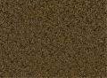 Fortitude - Bliss Carpet