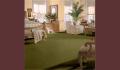 Perfectly Distinguished / Amazon Green Carpet
