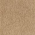 Del Rio Karastan Carpet