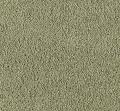 Witty Charm Mohawk Carpet