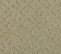 Carlow Mohawk Carpet