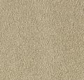 Regal Point Mohawk Carpet
