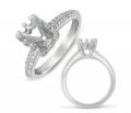 EN7473WG Ring