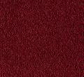 Lasting Allure Mohawk Carpet