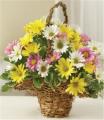 Spring Daisy Baske