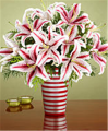 Deluxe Candy Cane Lilies