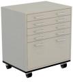Mobile Laboratory Cabinets