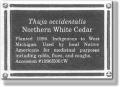 Ultimate photo plaque