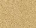 Supreme Intellect Carpet
