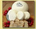 Panela Cheese