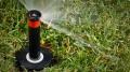 Pro-Spray Sprinkler Head