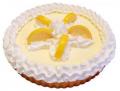 8 inch Lemon Fake Food Pie USA