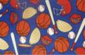 Sports Fleece - Royal Fabric