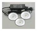 LED Light Fixture- Thally