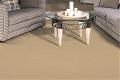 Overdrive Carpet