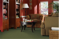 Millennium Nouveau Carpet
