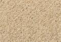 Miami Shores Mohawk Carpet