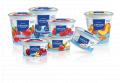 Nonfat Blueberry Yogurt