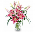 Purely Stargazers Bouquet