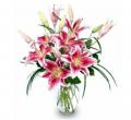 Purely Stargazers Bouquet