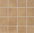 A1107 Mosaics