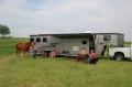 Horse Gooseneck Slant Living Quarters 12 Foot Short Wall