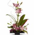 Flower Arrangement Imagination Blooms
