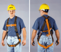 Warehouse Picker's Harness