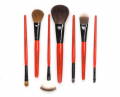 Professional brushes