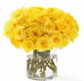 Flower Yellow Roses