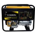 Robin Subaru RGX4800 Recoil Start Portable Generator