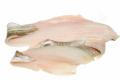 Fresh Fish Cod