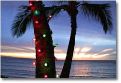 Order Holiday / seasonal